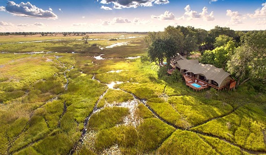 Duba Plains Camp