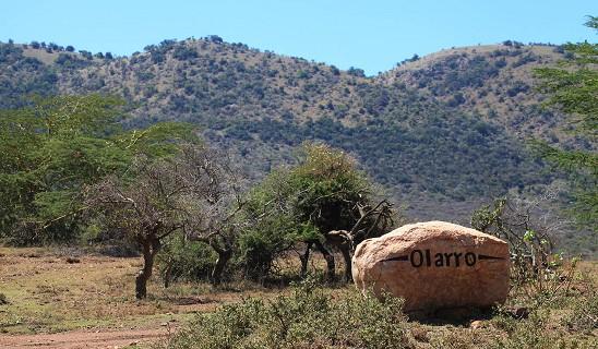 Olarro Camp