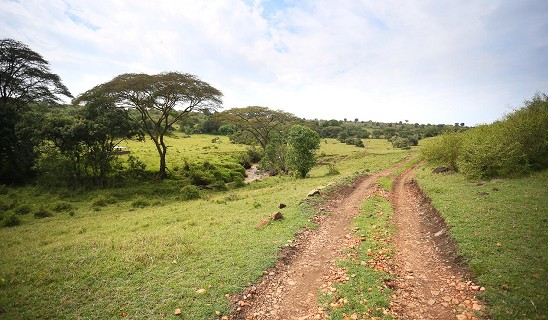 Kicheche Mara North