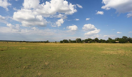Mara Plains