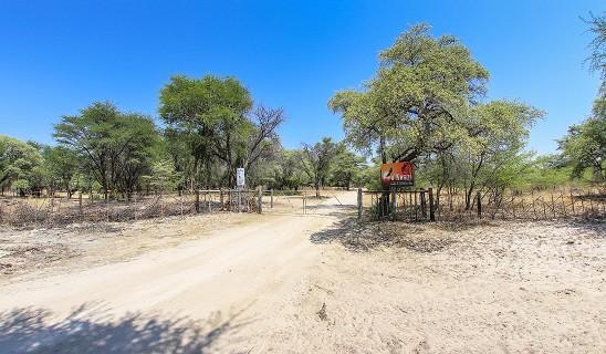 Nkwazi Lodge