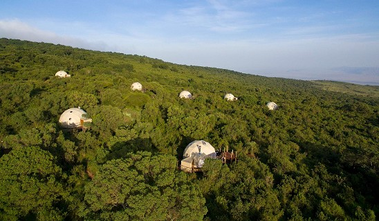 Ngorongoro Highlands Camp