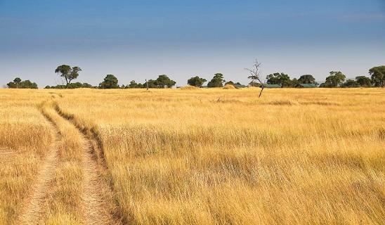 Chaka Serengeti Mara