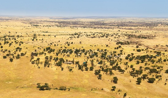 Serian Serengeti North