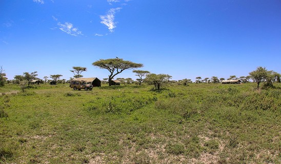 Olaado Ndutu Camp
