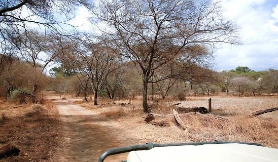 Ndarakwai Camp