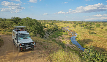 lower cost safaris