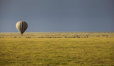balloon safari